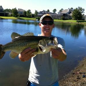 St. Augustine Bass