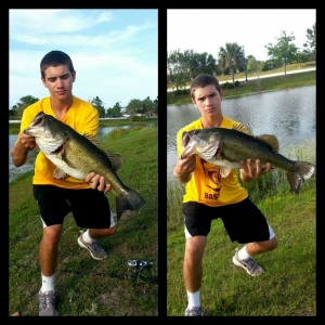 Lunker on the Frog