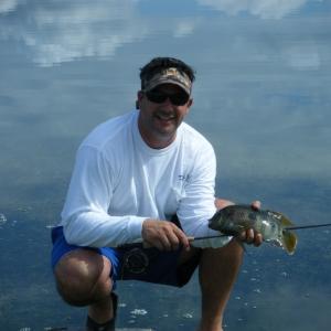 Freshwater Tilapia