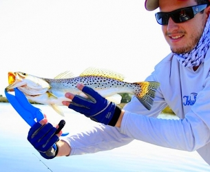 St. Marks Marsh Seatrout