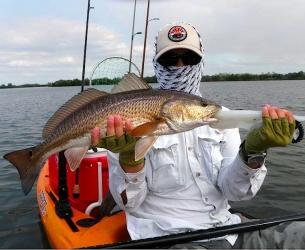 Homosassa Redfish