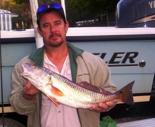 Dunellon Redfish