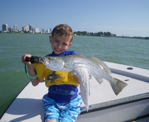 Biscayne Trout
