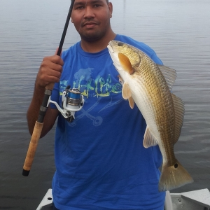Cockroach Bay Redfish