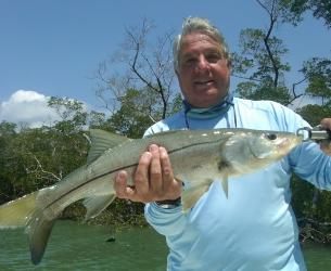 Estero Bay Snook