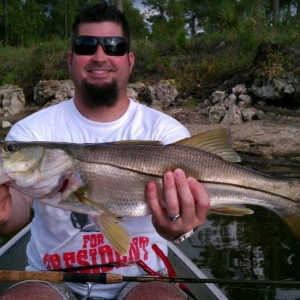 Golden Gates Snook