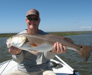 Waccasassa Red