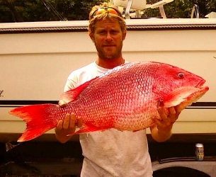 Panhandle Red Snapper