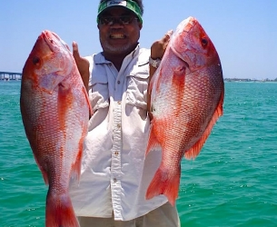 Red Snappers