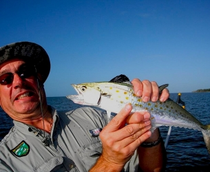 10000 Islands Spanish Mackerel
