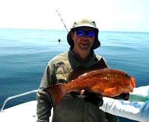 Panama City Red grouper