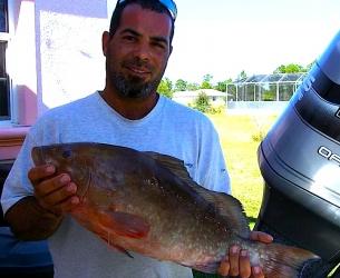 Big Carlos Pass Red Grouper