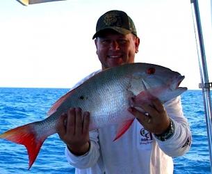Fish Quest Mutton Snapper