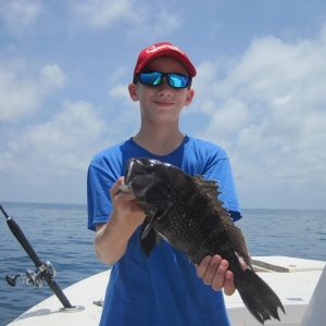 Port Canaveral Sea Bass