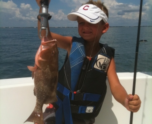 Venice Red Grouper
