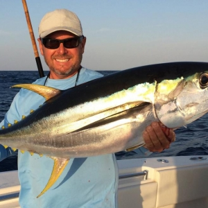 Harbour Island Yellowfin