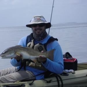 Chamberlain Redfish