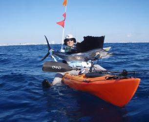 Fun-Size Sailfish