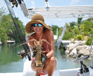 Lobsters from the Keys