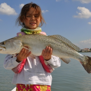 Aliyah\'s trout